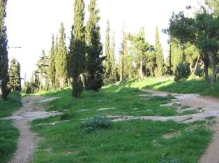 Лесопарк в Кесарьяни