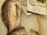 Фагрия. Греческая рыба